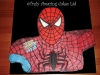 spiderman_cake_tac