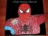 spiderman_cake_tac