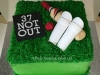 cricket_cake2