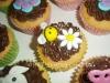 bee_cupcake_tac