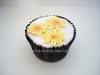 daisy_cupcake_tac