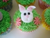 rabbit_cupcake_tac_0