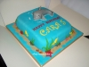 dolphin_cake2_tac