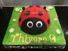ladybird_cake2_tac