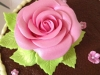 pink_sugar_rose_tac