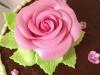 pink_sugar_rose_tac