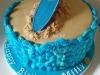 surf_cake2_tac