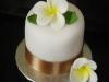 frangipani_cake_tac