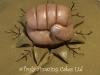 fist_topper